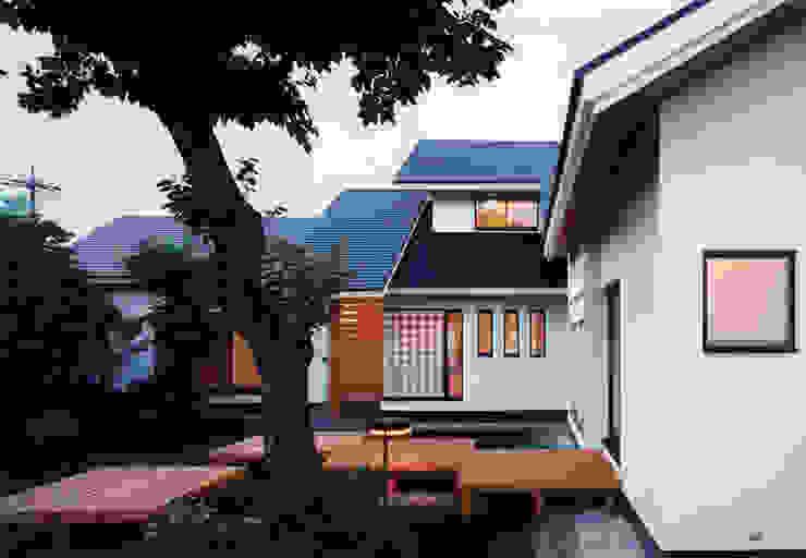 禅次丸の木のある家 モダンな 家 の 加藤將己/将建築設計事務所 モダン