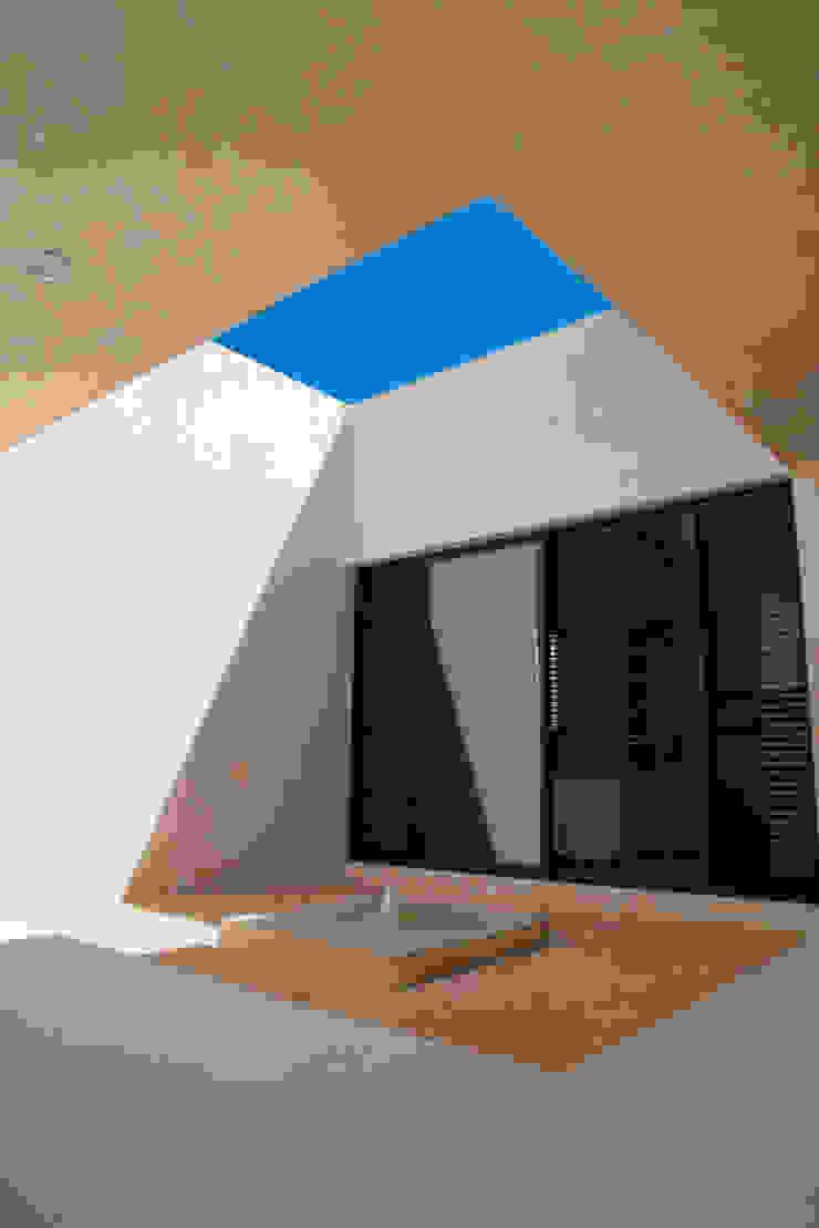 CASA MANGULICA Jardines modernos de Alberto Zavala Arquitectos Moderno