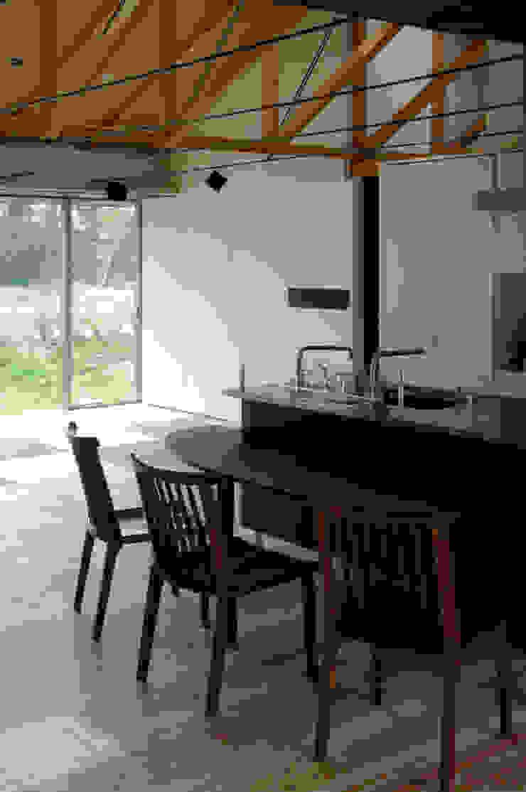 M-HOUSE内観4 トロピカルデザインの ダイニング の 3*D空間創考舎一級建築士事務所 トロピカル