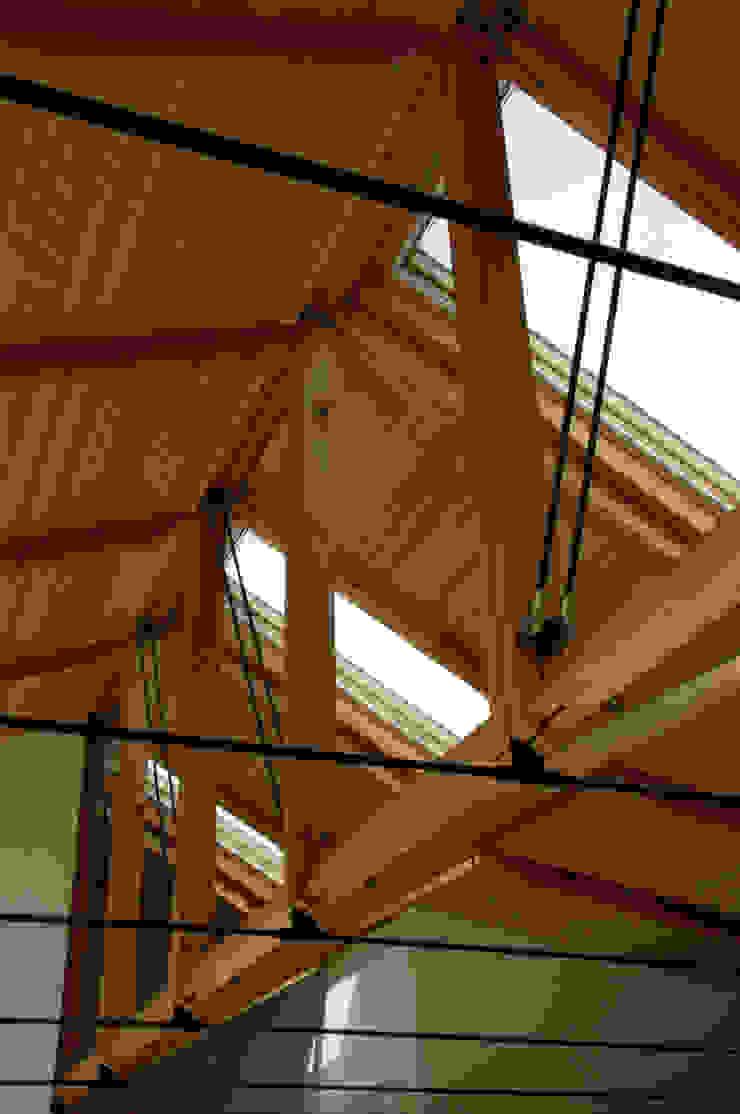 M-HOUSE内観3 トロピカルな 窓&ドア の 3*D空間創考舎一級建築士事務所 トロピカル
