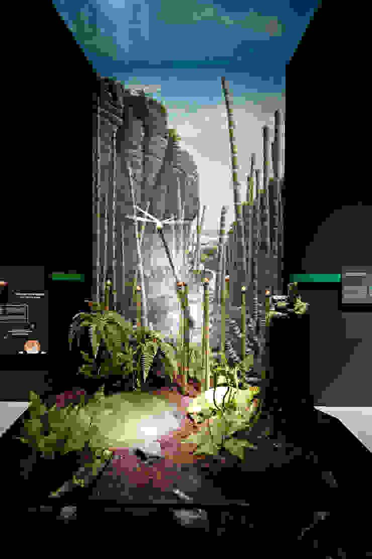 Objekt-Gestaltung Museums
