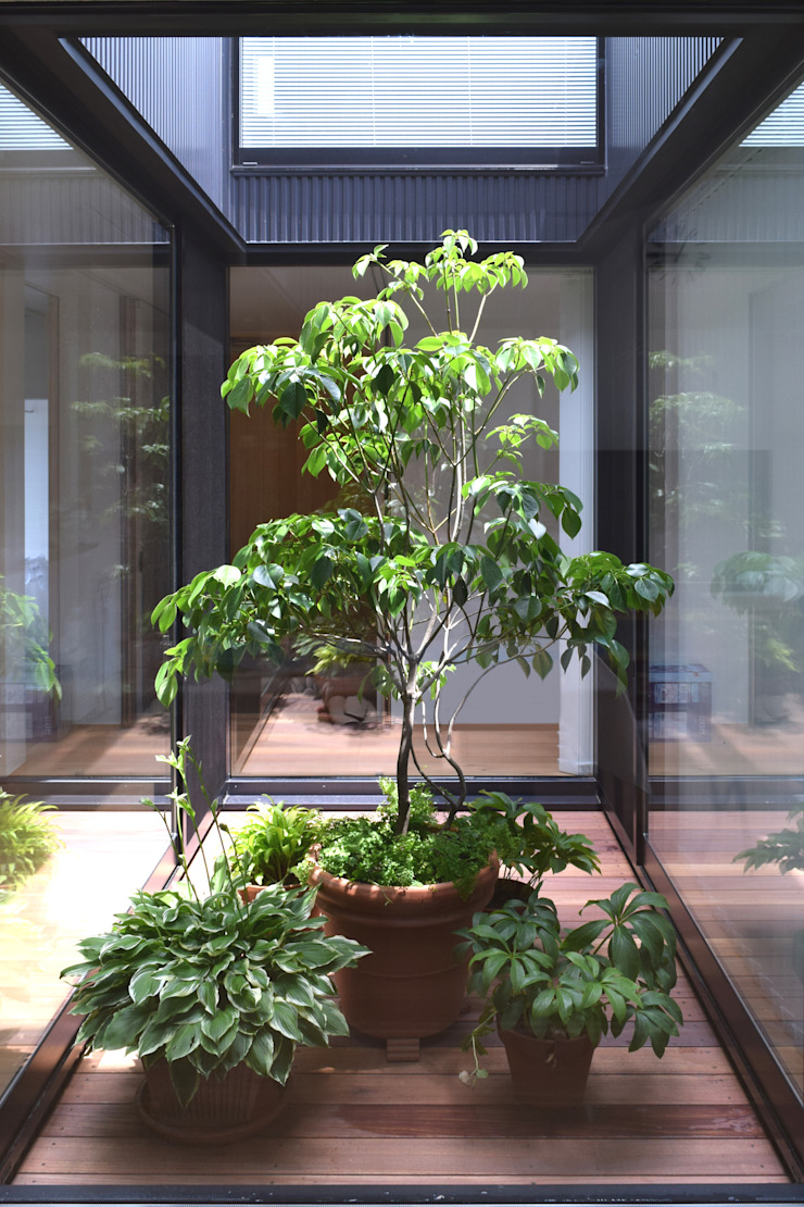 LIGHT COURT with PLANTS FURUKAWA DESIGN OFFICE Jardines de estilo moderno