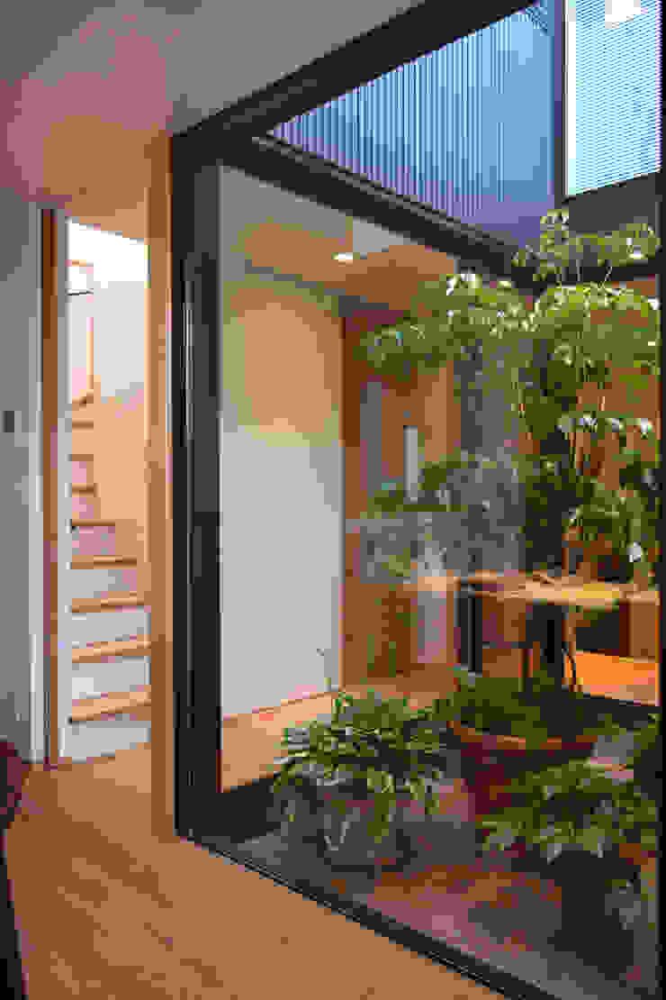 光庭の夕景 モダンな庭 の FURUKAWA DESIGN OFFICE モダン