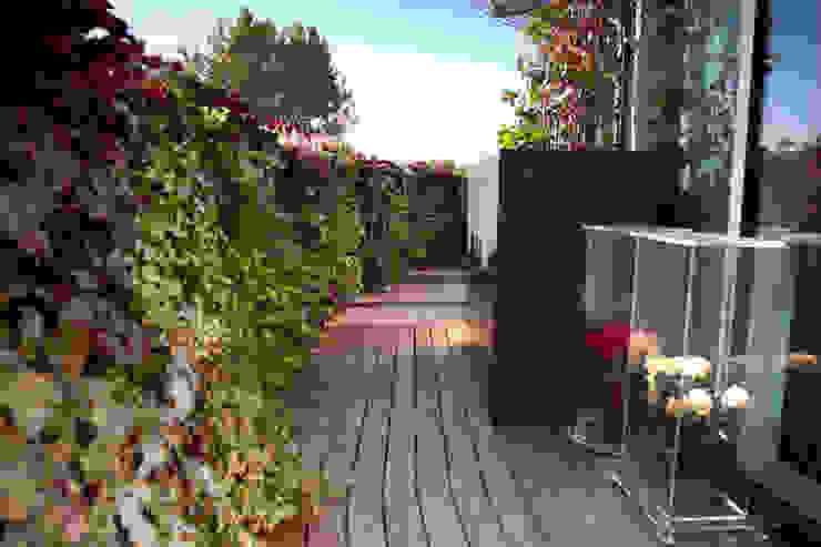 Il giardino verticale in terrazza Balcone, Veranda & Terrazza in stile moderno di homify Moderno