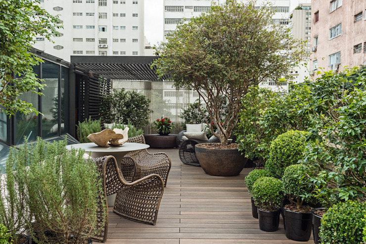 Modern style gardens by Denise Barretto Arquitetura Modern