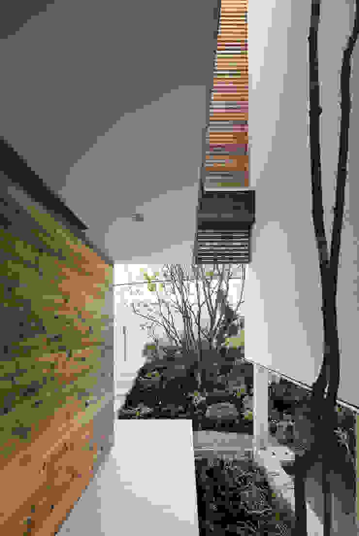HILL HOUSE モダンな庭 の プラスアトリエ一級建築士事務所 モダン