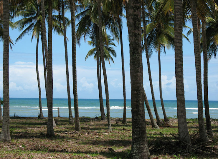 Residência Outeiro Jardins tropicais por Cria Arquitetura Tropical