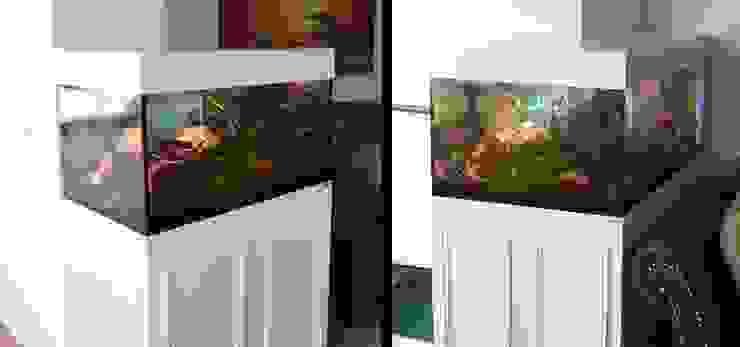Aquariumschrank in L-Form Ausgefallene Wohnzimmer von PYRA-Designmoebel.de Ausgefallen