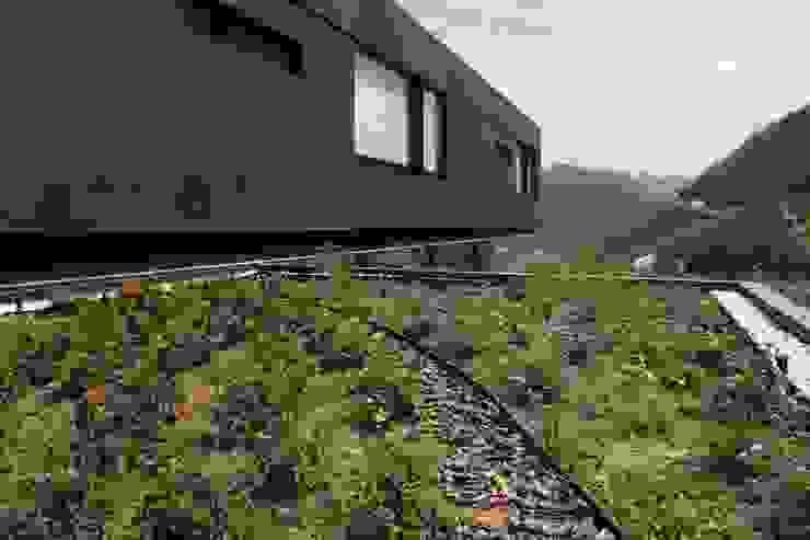 Casa BC Casas modernas de GLR Arquitectos Moderno