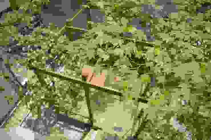 T's Garden Square Co.,Ltd. Escuelas