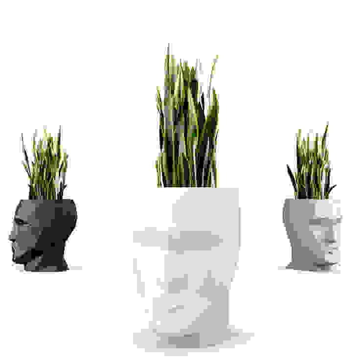 de Hydroponika - Wnętrz i zieleń Moderno