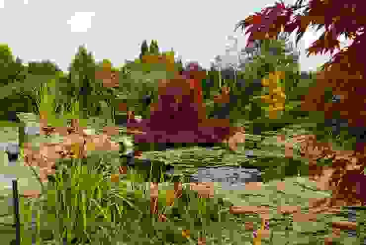 Jesień na wyspie Klasyczny ogród od Centrum ogrodnicze Ogrody ResGal Klasyczny