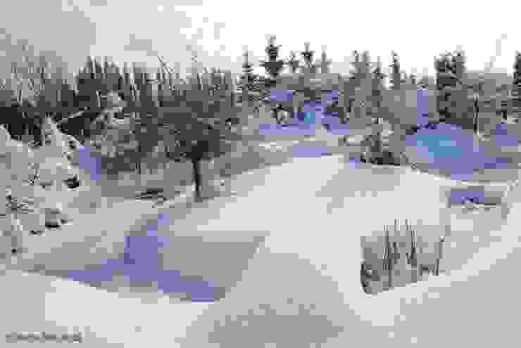 Zima na wyspie Klasyczny ogród od Centrum ogrodnicze Ogrody ResGal Klasyczny
