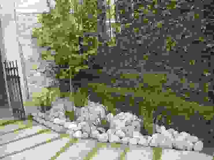 Jardín con piedra Jardines minimalistas de Vivero Sofia Minimalista