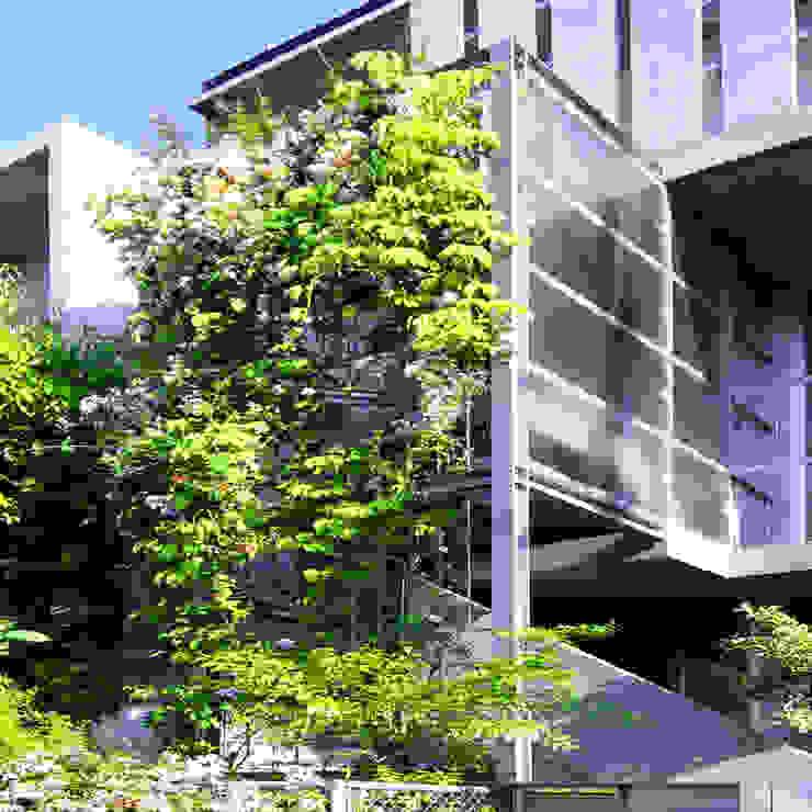 庭と一つになる家 モダンな 家 の ユミラ建築設計室 モダン