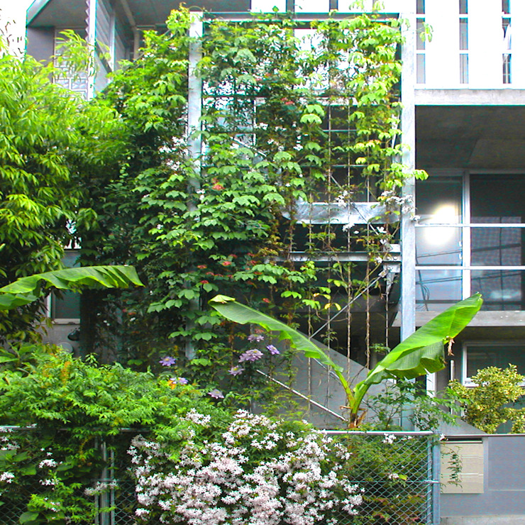 庭と一つになる家: ユミラ建築設計室が手掛けた家です。,モダン