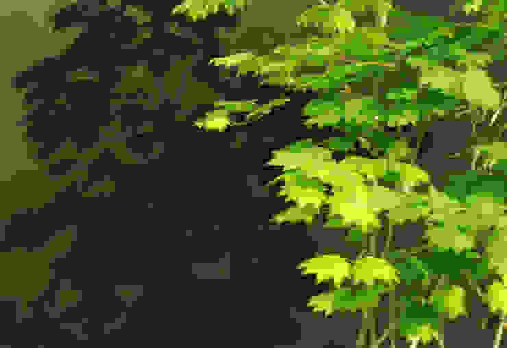garden M3 モダンな庭 の 山越健造デザインスタジオ Kenzo Yamakoshi Design Studio モダン