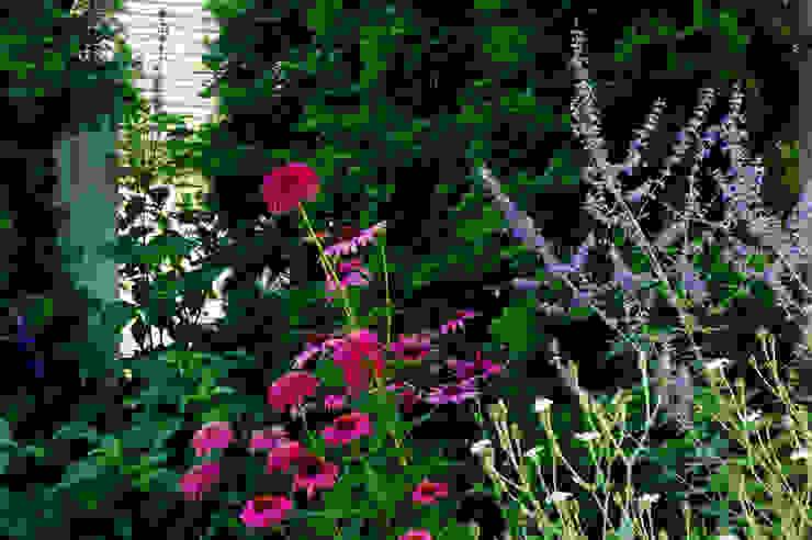garden M6 モダンな庭 の 山越健造デザインスタジオ Kenzo Yamakoshi Design Studio モダン