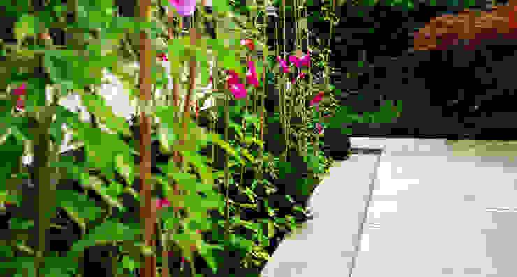 Modern garden by 山越健造デザインスタジオ Kenzo Yamakoshi Design Studio Modern