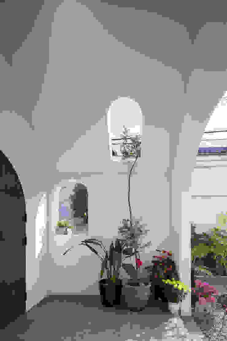 株式会社 藤本高志建築設計事務所 Modern windows & doors Wood White