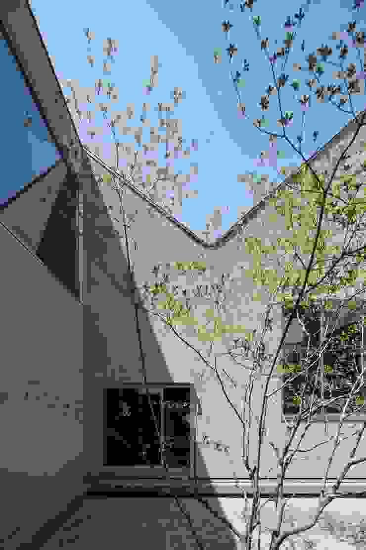 Elephant House オリジナルな 庭 の Hiromu Nakanishi Architects オリジナル