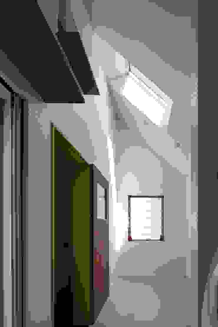 Elephant House オリジナルスタイルの 温室 の Hiromu Nakanishi Architects オリジナル