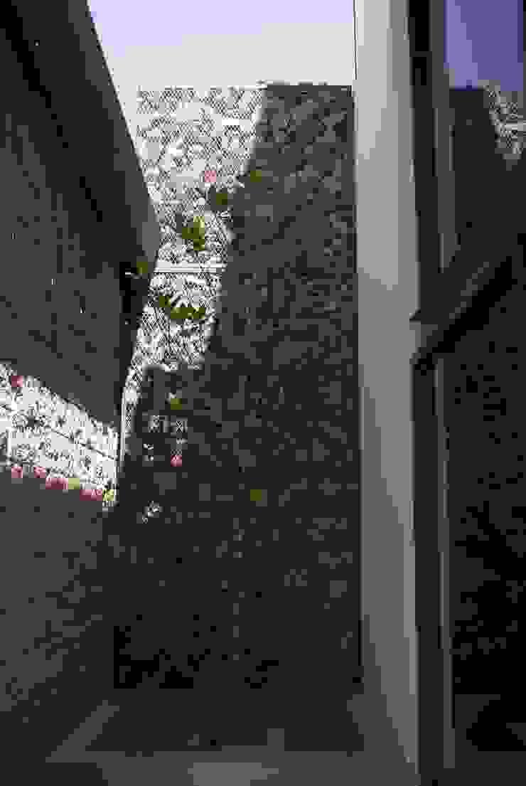 Tường & sàn phong cách hiện đại bởi Taller Habitat Arquitectos Hiện đại