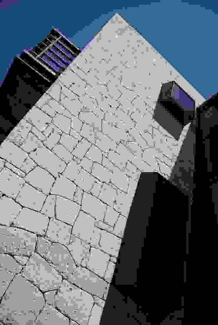 Cửa sổ & cửa ra vào phong cách hiện đại bởi Taller Habitat Arquitectos Hiện đại