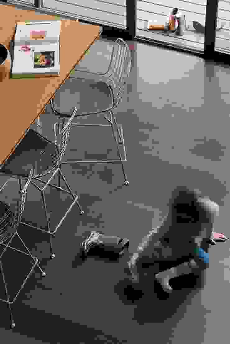 Modern Dining Room by WOODGRASS Modern