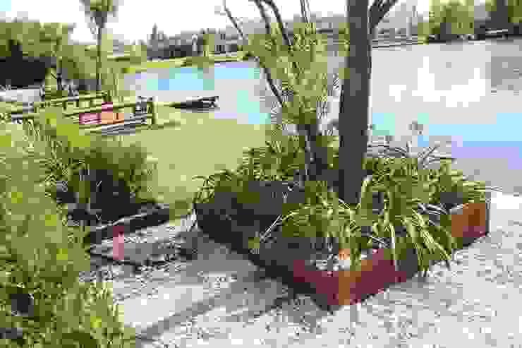al agua Jardines modernos: Ideas, imágenes y decoración de BAIRES GREEN Moderno