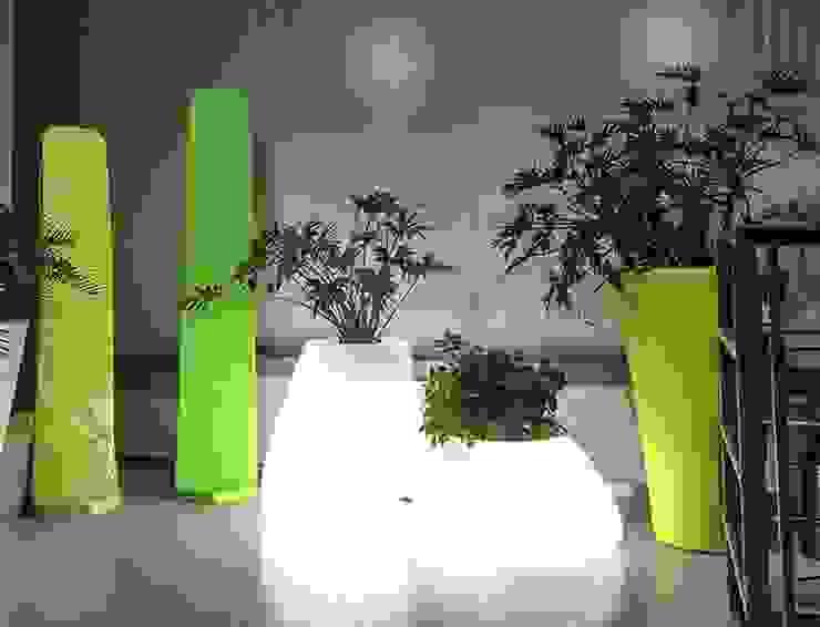 por Hydroponika - Wnętrz i zieleń Moderno