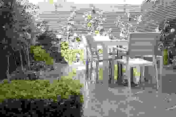 Small Urban Garden South London homify Modern garden