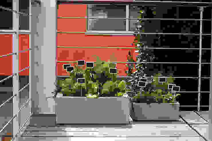 de style  par Hydroponika - Wnętrz i zieleń, Moderne