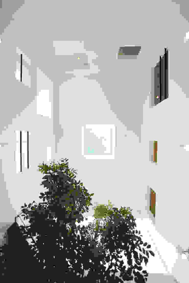 各居室と開口で繋がる吹抜け空間 モダンな 窓&ドア の スターディ・スタイル一級建築士事務所 モダン