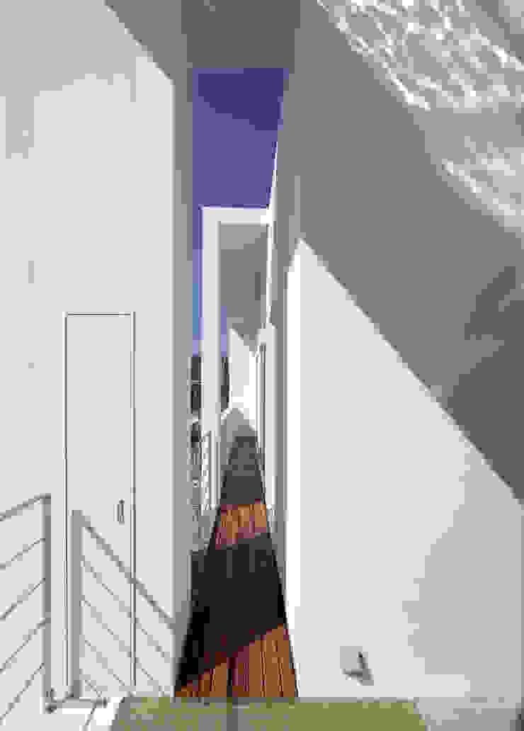 水盤の家 モダンデザインの テラス の 株式会社 庄司圭介アトリエ一級建築士事務所 モダン
