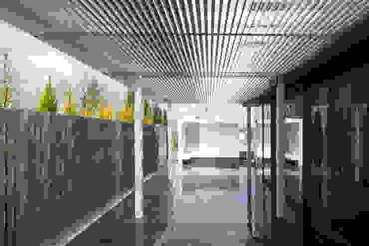 Modern garden by Abax Architects Modern