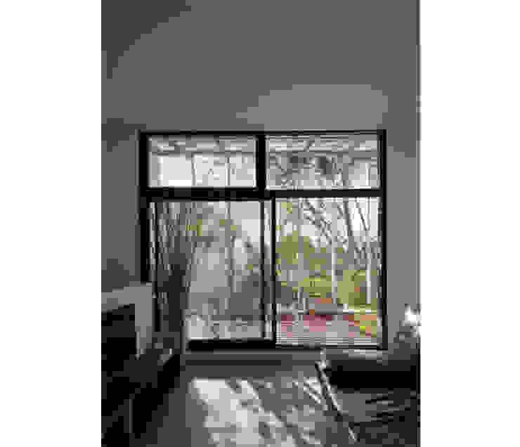 Modern windows & doors by IR arquitectura Modern
