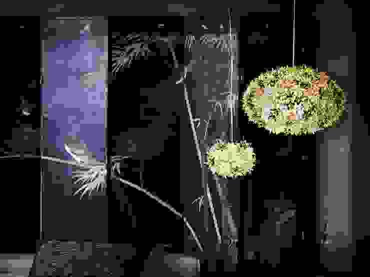 Bloom de GEO Iluminación Aplicada Moderno Plástico