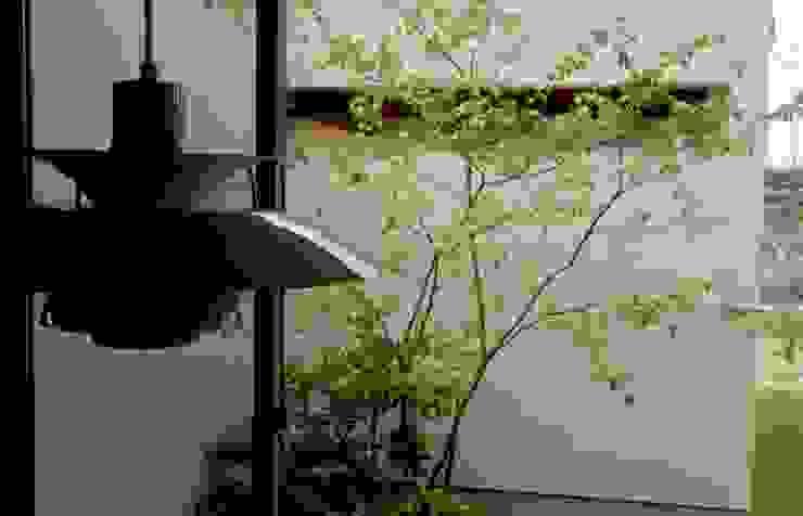 ここちの家 モダンな庭 の LIVING DESIGN モダン
