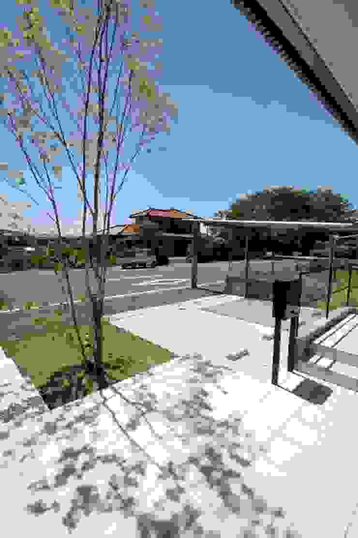 Jardines de estilo moderno de LIVING DESIGN Moderno