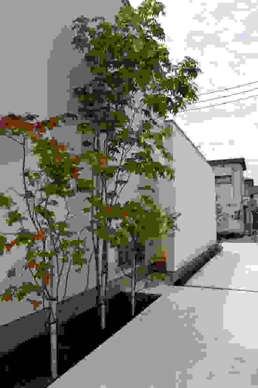名古路建築モデルハウス モダンな庭 の LIVING DESIGN モダン