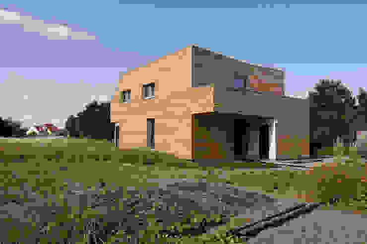 Symbios Architektur Modern Houses Wood Brown