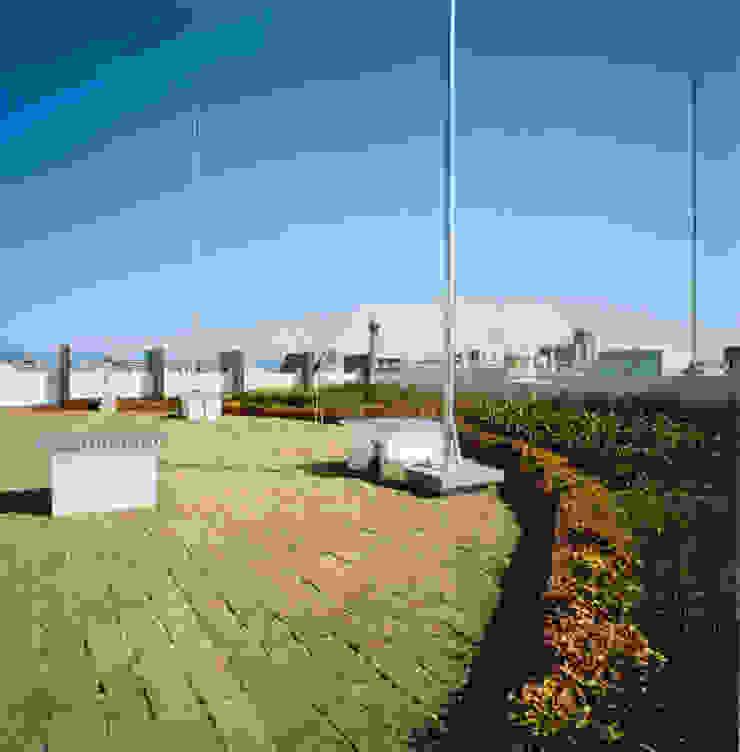 屋上緑化 モダンな庭 の あお建築設計 モダン 木 木目調