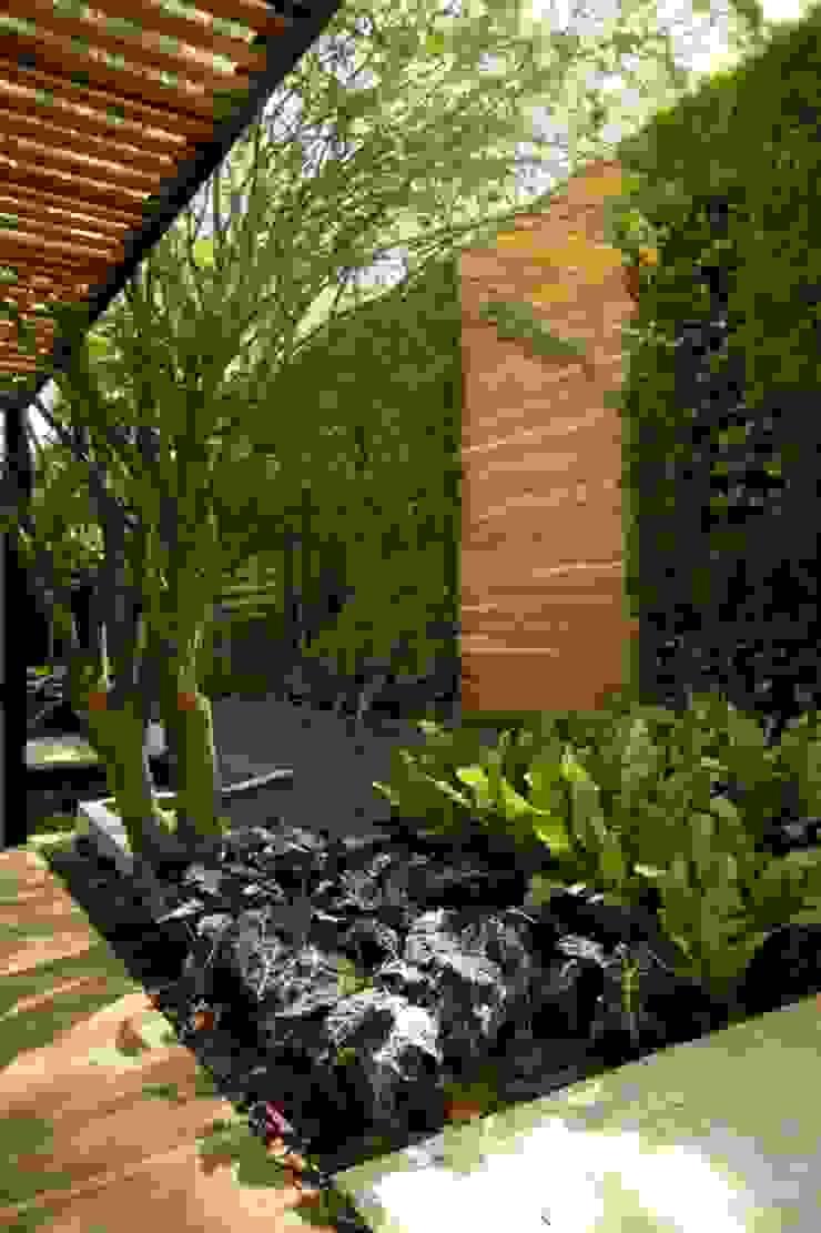 Jardin moderne par Green Gallery Moderne