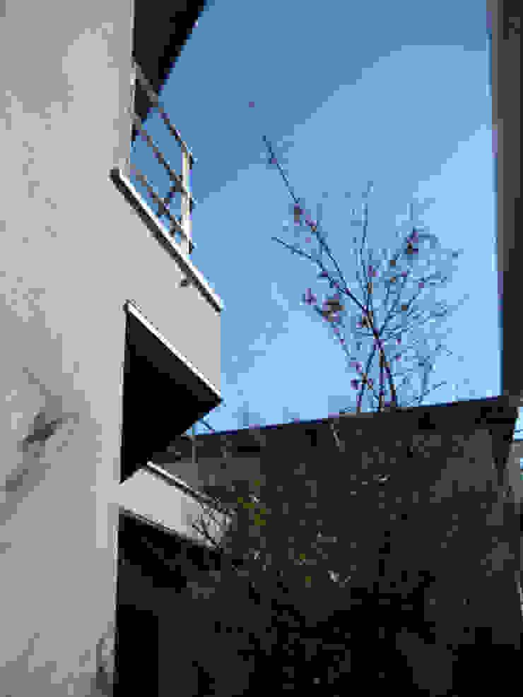 大岡山の家 北欧風 庭 の (有)伊藤道代建築設計事務所 北欧