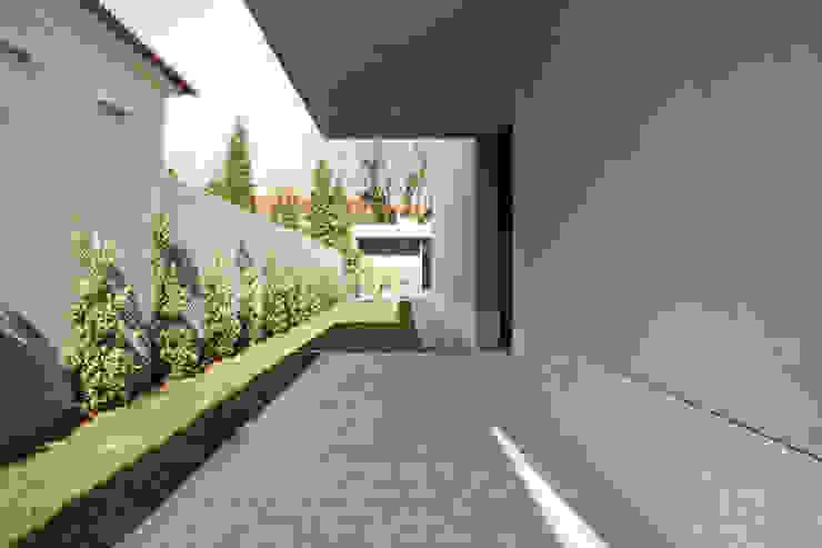 Casa F+M Paredes e pisos modernos por joão rapagão Moderno