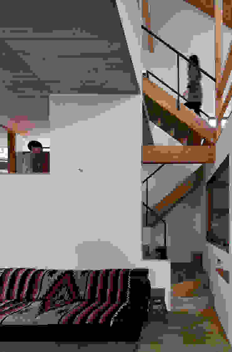 モグラハウス モダンスタイルの 玄関&廊下&階段 の 藤森大作建築設計事務所 モダン