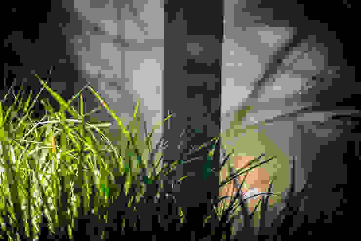 Jardin de nuit par Art Bor Concept Moderne