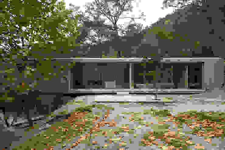 Casa no Gerês Modern houses by CORREIA/RAGAZZI ARQUITECTOS Modern