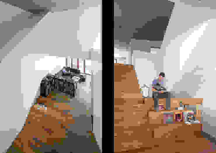 Corredores, halls e escadas tropicais por atelier vens vanbelle Tropical
